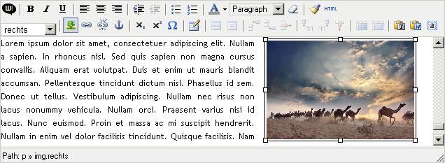 edit_007.jpg