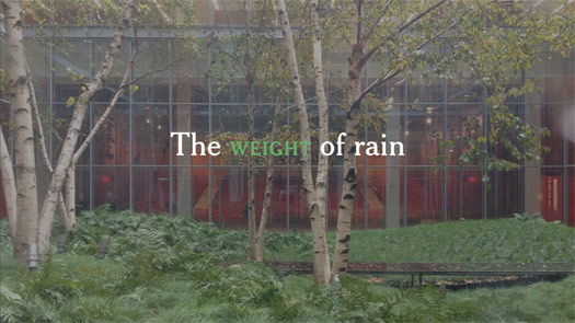 weightofrain