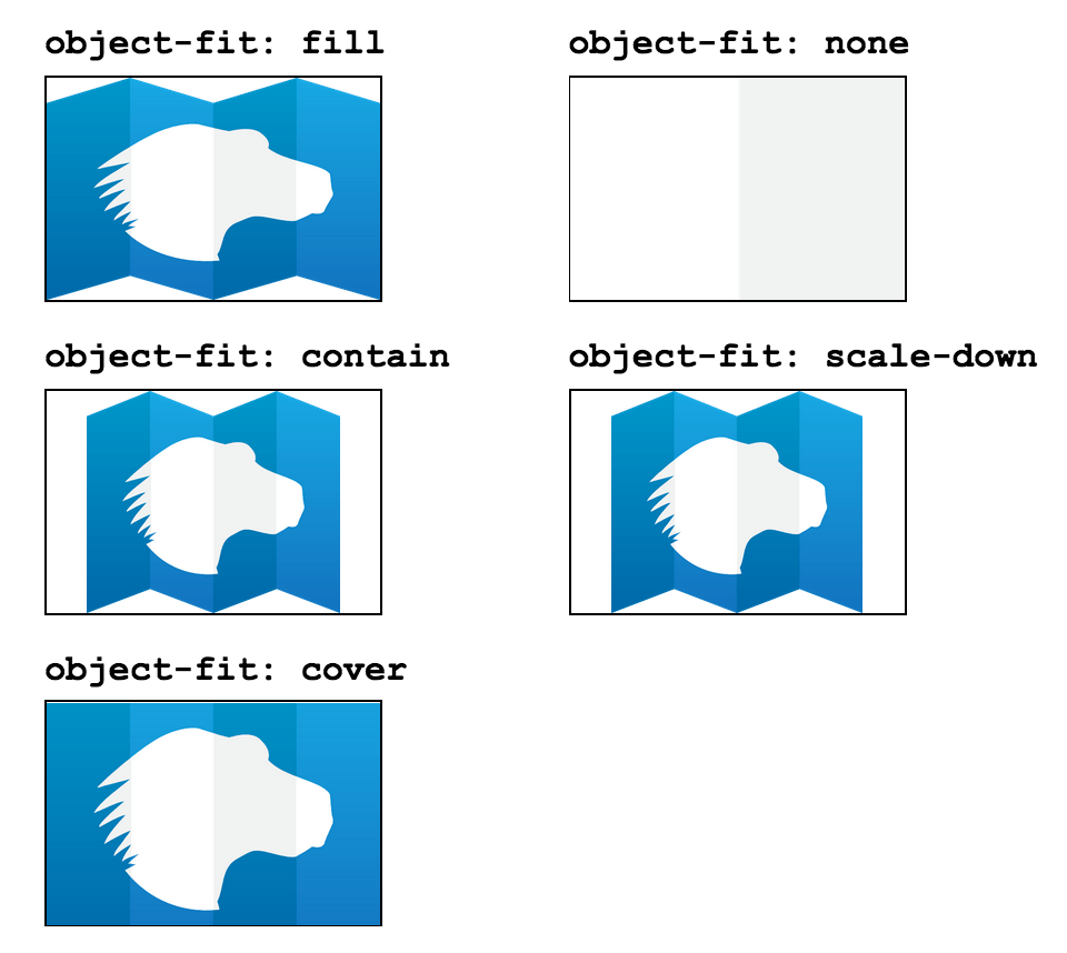css-object-fit